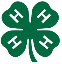 4-H Summer Funshops & Day Camps